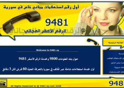 9481_sy.com